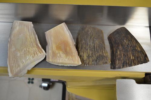 (1) Musk Ox slabs. Inside on left & outside on right.